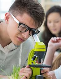ЕГЭ по биологии в Сочи