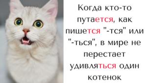 Правописание -тся и -ться урок русского языка от репетитора
